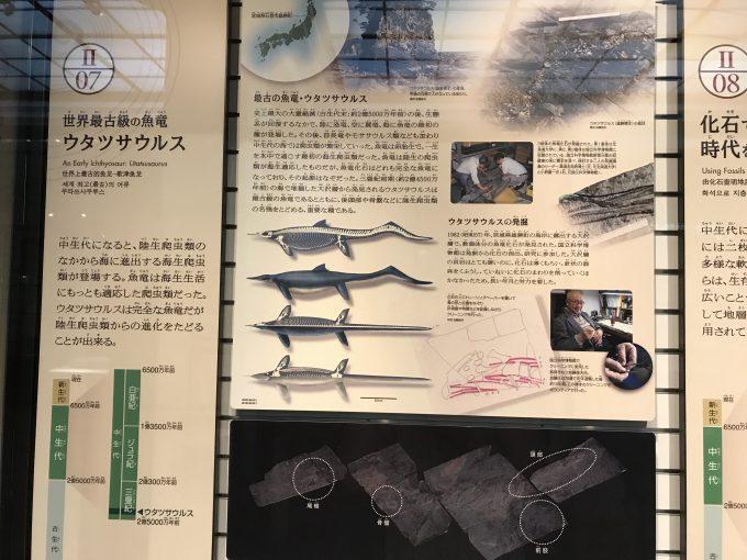 国立科学博物館の日本館3階展示室