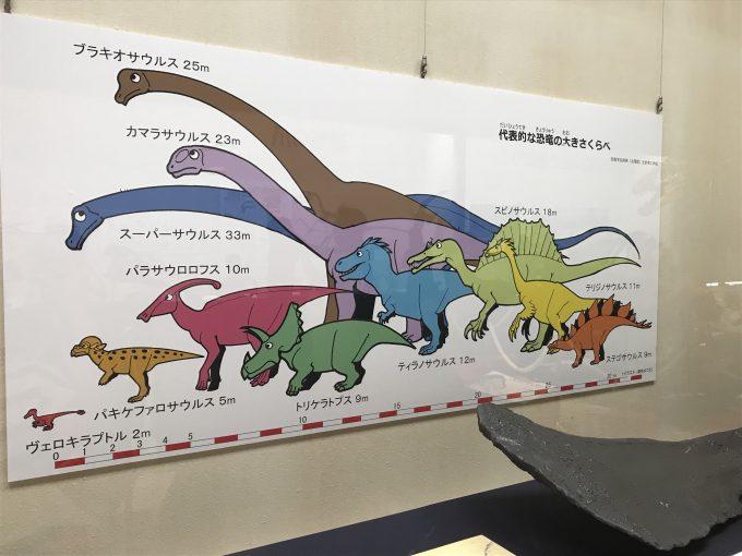 恐竜ミュージアムinちば解説イラスト