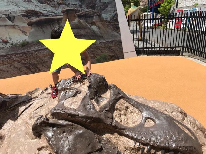ティラノサウルスの産状骨格