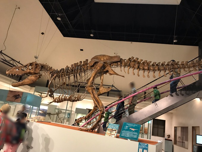 神流町恐竜センターのタルボサウルス